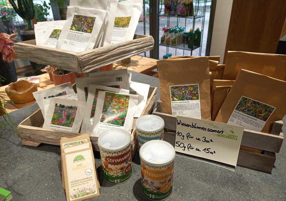 Blumenwiese für Bienen, Schmetterlinge & Co